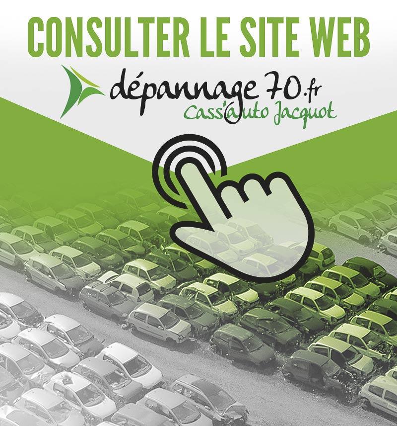 consulter le site web